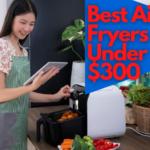 Best air fryer under $300